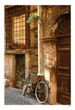 Bicycle at the Door by Igor Maloratsky