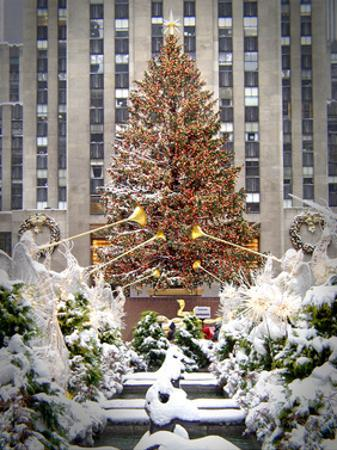 Christmas Tree at Rockefeller Center by Igor Maloratsky