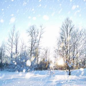 Winter Landscape with Snow by IgorKovalchuk