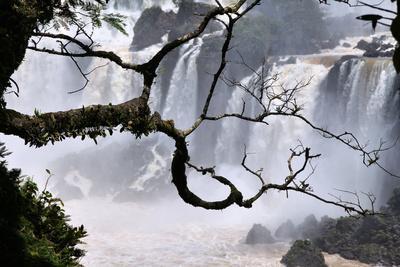 https://imgc.allpostersimages.com/img/posters/iguazu-falls-national-park_u-L-Q105K270.jpg?artPerspective=n
