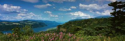 Columbia River Gorge V by Ike Leahy