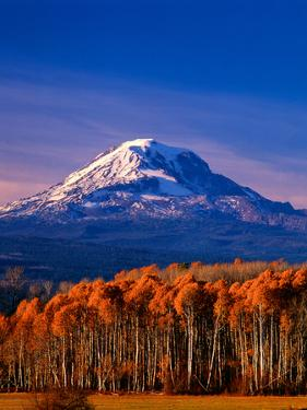 Mt. Adams III by Ike Leahy