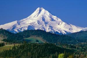 Mt. Hood XI by Ike Leahy