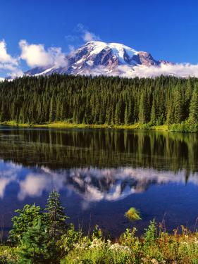 Mt. Rainer II by Ike Leahy