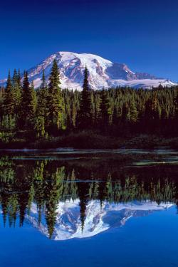 Mt. Rainier III by Ike Leahy
