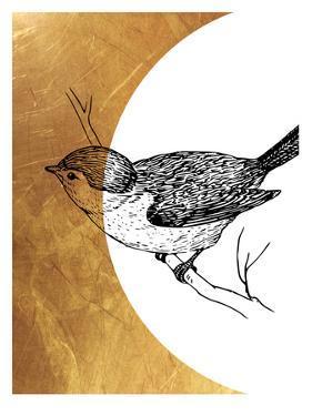 Bird 4 by Ikonolexi
