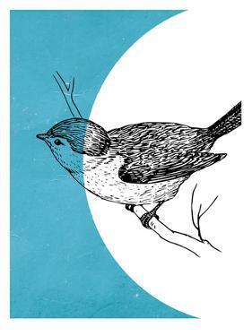 Bird by Ikonolexi
