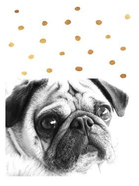 Dog 3 by Ikonolexi