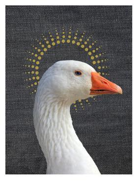 Duck 2 by Ikonolexi