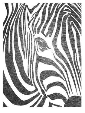 Zebra 3 by Ikonolexi