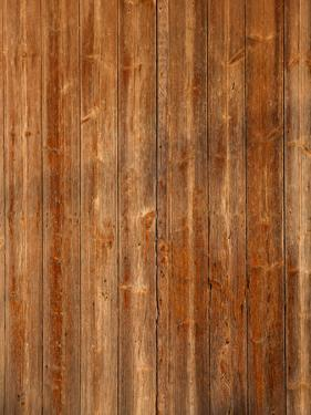 Wood Background with Scratches by ilker canikligil