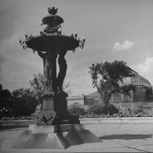 Illuminated Fountain, Designed by Henri Auguste Bartholdi, in the Botanical Gardens
