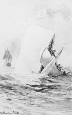 Illustration for Moby Dick by A. Burnham Shute