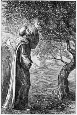 Illustration of Saint Columba Blessing the Apples
