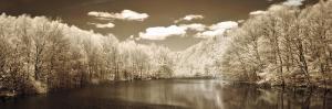 A Tranquil Journey by Ily Szilagyi