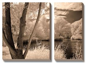 Lakefront View I by Ily Szilagyi