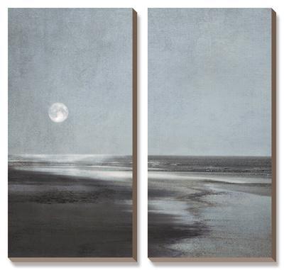 Moonlit Beach by Ily Szilagyi