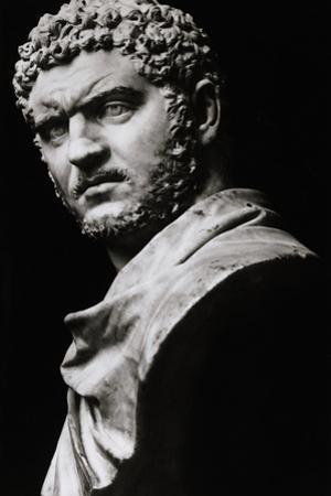 Imperial Roman Bust of Emperor Caracalla