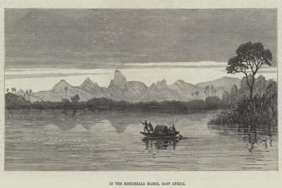 https://imgc.allpostersimages.com/img/posters/in-the-morumbala-marsh-east-africa_u-L-PVWLGJ0.jpg?p=0