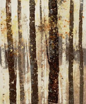 Woodland 7 by Inc DAG