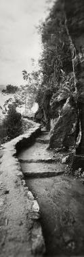 Inca Trail at the Mountainside, Machu Picchu, Cusco Region, Peru