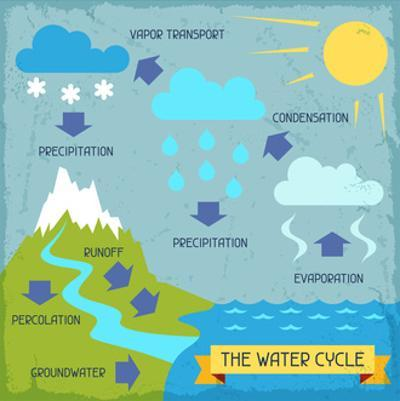 The Water Cycle by incomible