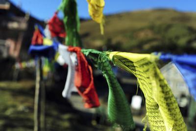 https://imgc.allpostersimages.com/img/posters/india-west-bengal-singalila-national-park-tonglu-buddhist-prayer-flags_u-L-PU3G0O0.jpg?p=0