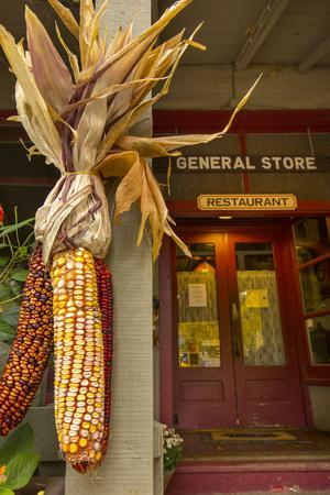 https://imgc.allpostersimages.com/img/posters/indian-corn-at-entrance-to-the-historic-story-inn-story-indiana_u-L-PU3G130.jpg?p=0