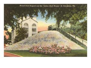 Indian Shell Mound, St. Petersburg, Florida