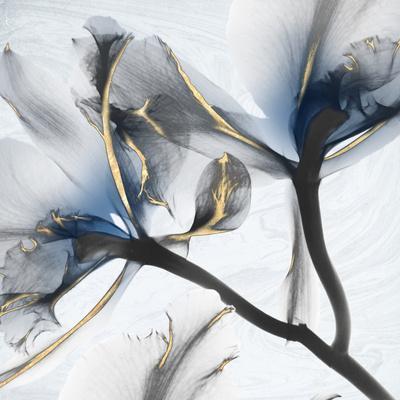 https://imgc.allpostersimages.com/img/posters/indigo-luster-marble-2_u-L-Q1BCI0V0.jpg?artPerspective=n