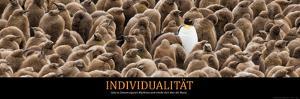 Individualität (German Translation)