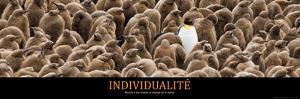 Individualité (French Translation)