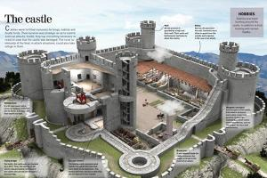 Infographic About a Medieval Castle Where Kings, Nobles and Lords Cohabited