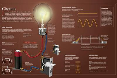 Infographic About Electric Circuits: What They Are, in Which Ways Can Electric Current Flow