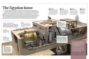 Infographic About Houses in Ancient Egypt, Built with Adobe and Different Rooms