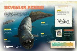 Infographic About the Devonian Period of the Palaeozoic Era