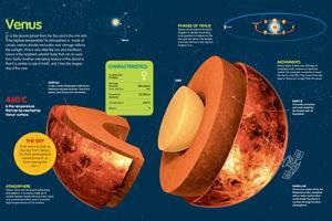 Infographic About Venus, its Atmosphere, Composition, Orbit and Rotation