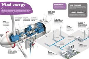 Infographic About Wind Power, One of the Most Promising Renewable Energies