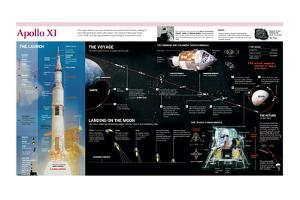Infographic of the Launch, the Flight, the Lunar Landing and the Return of the Apollo XI