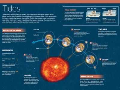 Infographic on Tides, Produced by the Attraction of the Sun and Moon