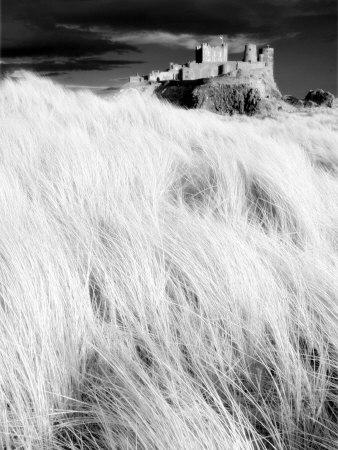 https://imgc.allpostersimages.com/img/posters/infrared-image-of-bamburgh-castle-from-the-dunes-above-bamburgh-beach-northumberland-england-uk_u-L-P7NKHS0.jpg?p=0