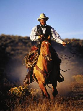 Cowboy on Running Horse with Whip by Inga Spence