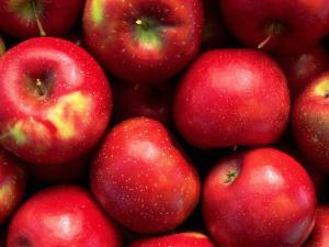 Red Rome Beauty Apples by Inga Spence