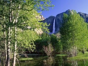 Yosemite Falls, Spring Time, CA by Inga Spence