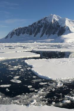 Antarctica. Antarctic Peninsula. the Gullet. Ice Floes and Brash Ice by Inger Hogstrom