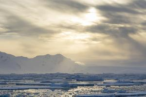 Antarctica. Near Adelaide Island. the Gullet. Ice Floes at Sunset by Inger Hogstrom