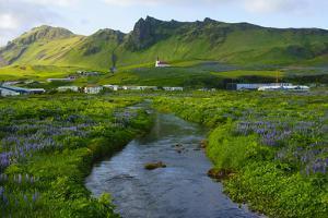 Iceland. South. Vik I Myrdal. Stream Running Down to the Beach by Inger Hogstrom