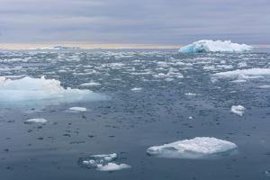 Norway. Nordaustlandet Island. Brasvelbreen. Brash Ice in the Water by Inger Hogstrom