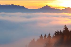 High Fog in the Bavarian Allgau, Autumn by Ingmar Wesemann