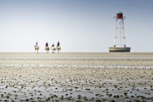 Germany, Schleswig-Holstein, Pellworm, Mud Flats, Rider by Ingo Boelter